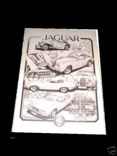 """Michael ,Sturm, Zeichnung, """"Ein Traum von Jaguar"""" ,limitiert, und handsigniert, Bild Nr 21 von 100"""